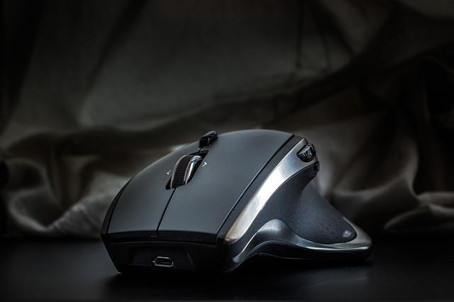 souris d'ordinateur